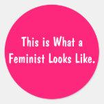 Esto es lo que parece una feminista el pegatina