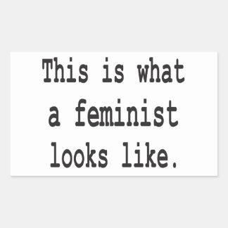 Esto es lo que parece una feminista rectangular altavoz