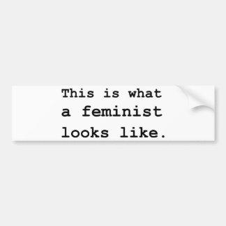 Esto es lo que parece una feminista pegatina para auto