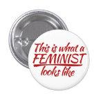 Esto es lo que parece una feminista pins