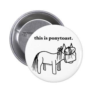 esto es un botón del ponytoast pin redondo de 2 pulgadas