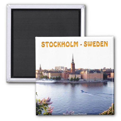 Estocolmo - Suecia (Mojisola un Gbadamosi) Iman Para Frigorífico
