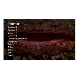 Estómago cavernoso de un pescado de escorpión plantilla de tarjeta de visita