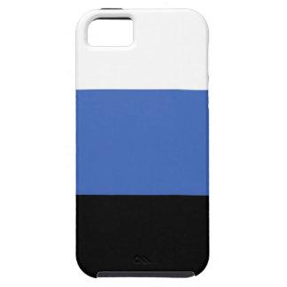estonia country flag case