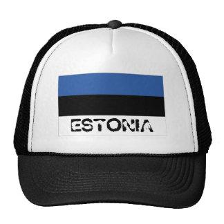 Estonia estonian flag trucker mesh souvenir hat