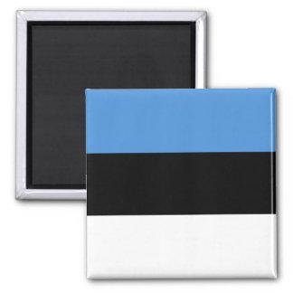 Estonia Flag EE 2 Inch Square Magnet