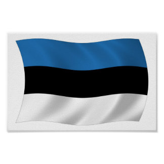 Estonia Flag Poster Print