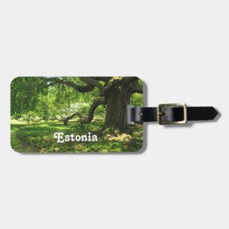 Estonia Landscape Bag Tag