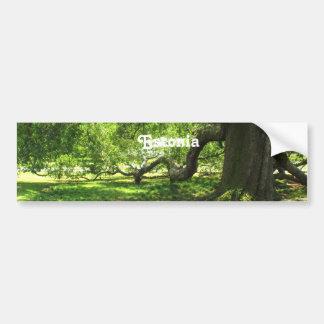 Estonia Landscape Bumper Sticker