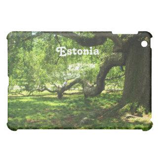 Estonia Landscape Case For The iPad Mini