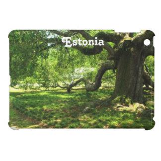 Estonia Landscape Cover For The iPad Mini
