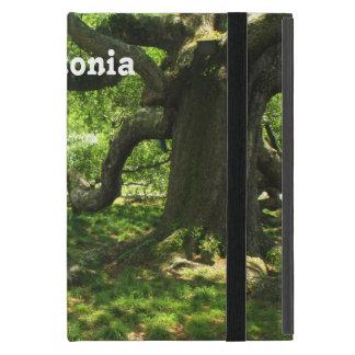 Estonia Landscape iPad Mini Cover