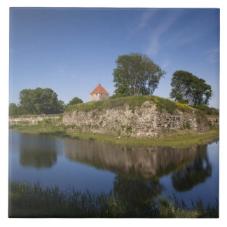 Estonia, Western Estonia Islands, Saaremaa 2 Tile