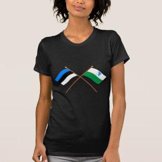 Estonia y banderas cruzadas Valga Playera