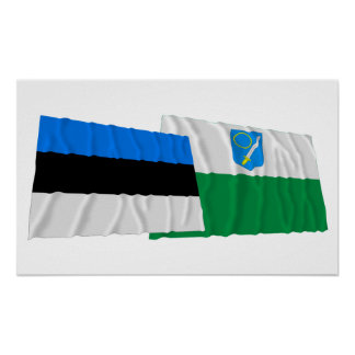 Estonia y banderas que agitan de Võru Impresiones