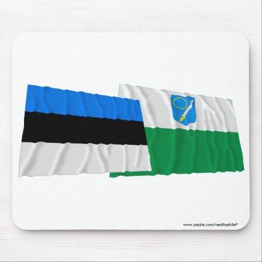 Estonia y banderas que agitan de Võru Tapete De Ratones