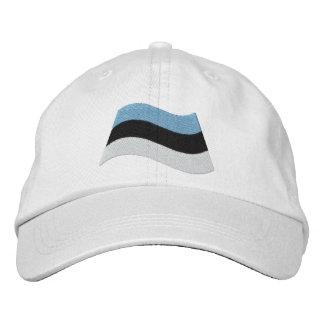 Estonian Flag Cap