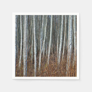 Estonia'S Aspen Forest Soldier Trees In Springtime Paper Napkin