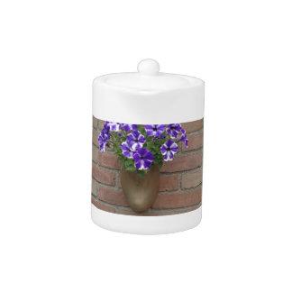 Estorbo del holandés con la violeta blanca azul