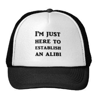 Estoy apenas aquí establecer una coartada gorra