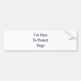 Estoy aquí proteger perros etiqueta de parachoque