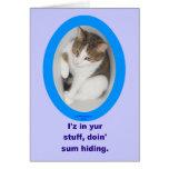 Estoy en su materia, haciendo algún gato de oculta felicitación