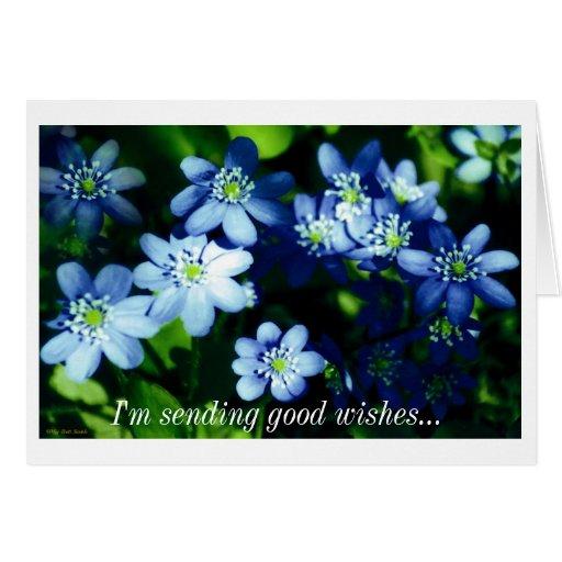 Estoy enviando buenos deseos tarjeta de felicitación