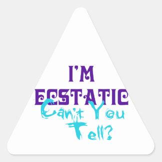 ¿Estoy extático no puedo usted decir? Pegatinas De Triangulo Personalizadas