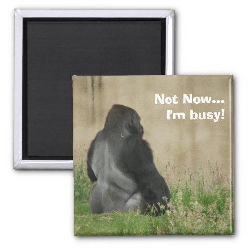 ¡… Estoy ocupado no ahora! Imán