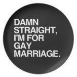 Estoy PARA EL MATRIMONIO HOMOSEXUAL Plato De Comida