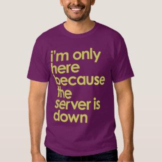 Estoy solamente aquí porque el servidor está abajo camisas