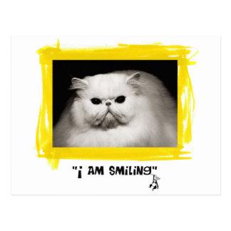 Estoy sonriendo tarjeta postal