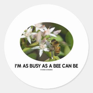 Estoy tan ocupado como una abeja puede ser (la pegatinas redondas