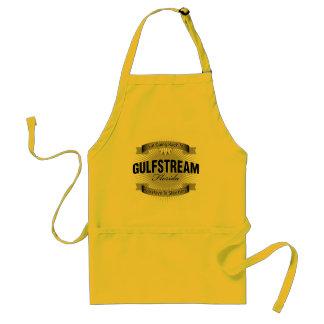Estoy volviendo a (Gulfstream) Delantal