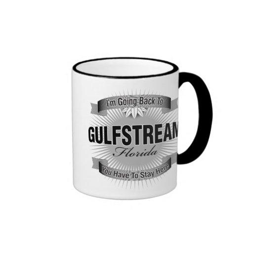 Estoy volviendo a (Gulfstream) Taza De Dos Colores