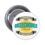 Estoy volviendo a (Okeechobee) Pins