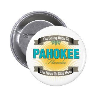 Estoy volviendo a (Pahokee) Pins