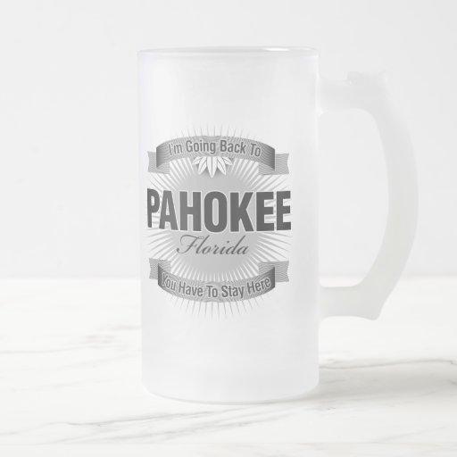 Estoy volviendo a (Pahokee) Taza