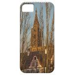 Estrasburgo - catedral y árboles iPhone 5 cobertura