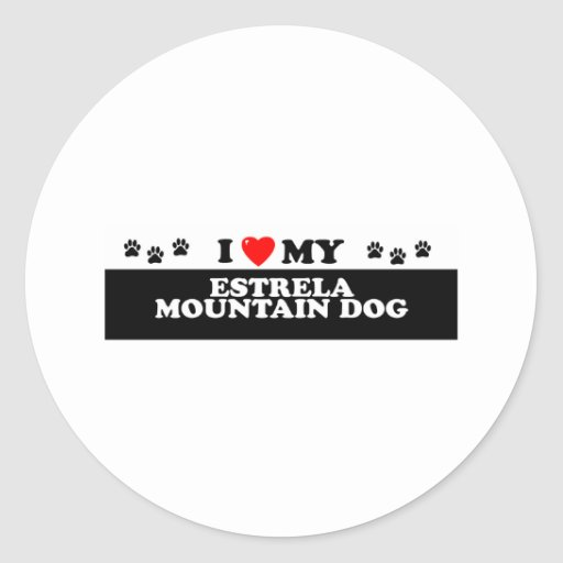ESTRELA MOUNTAIN DG_ CLASSIC ROUND STICKER