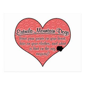 Estrela Mountain Dog Paw Prints Humor Post Cards