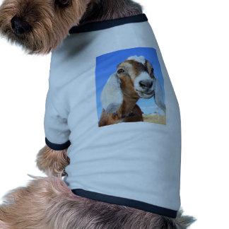Estrella 1.jpg de la cabra camiseta con mangas para perro