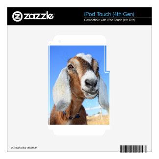 Estrella 1.jpg de la cabra skins para iPod touch 4G
