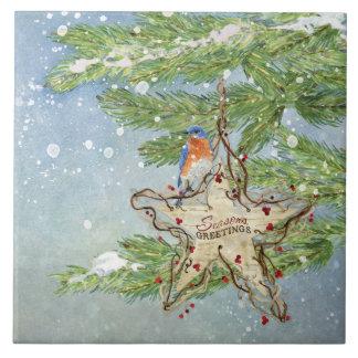 Estrella azul del abedul del pájaro de la azulejo cuadrado grande