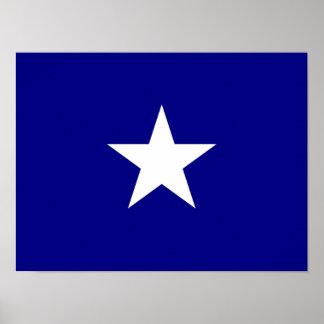 Estrella blanca de la bandera azul de Bonnie Póster