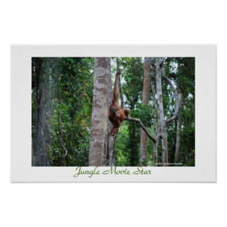 Estrella de cine de la selva impresiones