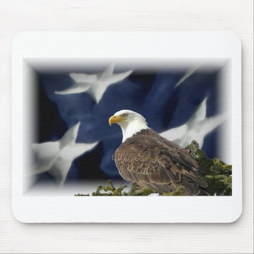 Estrella de Eagle Alfombrillas De Ratones