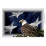 Estrella de Eagle Felicitaciones