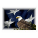 Estrella de Eagle Postales