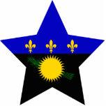Estrella de Guadalupe Esculturas Fotograficas